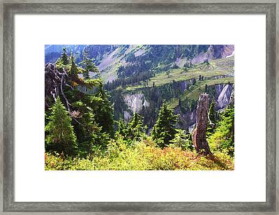 Mt. Baker Washington Framed Print