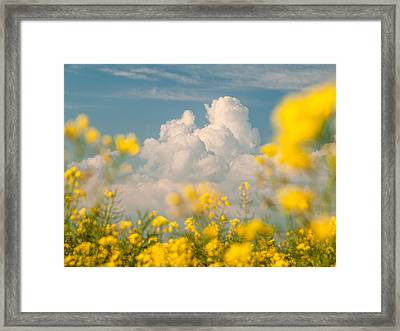 Mt Cloud Framed Print