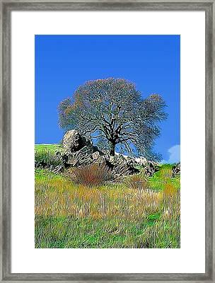 Mt. Diablo Oak Tree Framed Print by Wernher Krutein