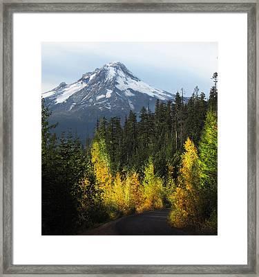 Mt Hood Framed Print