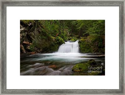 Mt. Hood Cascade In Summer Framed Print by Jackie Follett