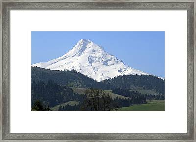 Mt Hood Framed Print by Elvira Butler