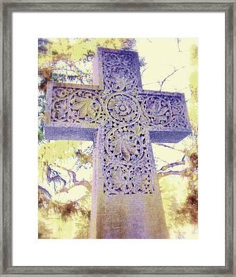 Mt. Hope Cemetery Rochester Ny Framed Print