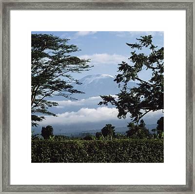 Mt, Kilimanjaro Framed Print