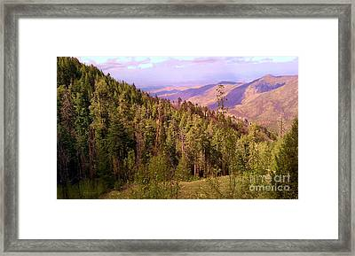 Mt. Lemmon Vista Framed Print