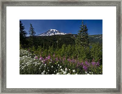 Mt. Rainier Framed Print by Adam Romanowicz