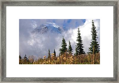 Mt Rainier Cloud Meadow Framed Print