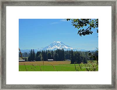 Mt. Rainier From The Western Side Framed Print