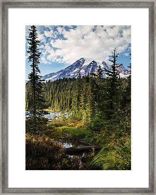 Mt Rainier National Park Framed Print by Angie Vogel