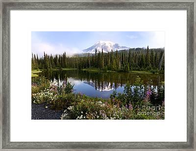 Mt. Rainier National Park Framed Print by King Wu
