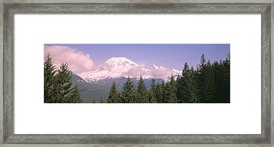 Mt Ranier Mt Ranier National Park Wa Framed Print by Panoramic Images