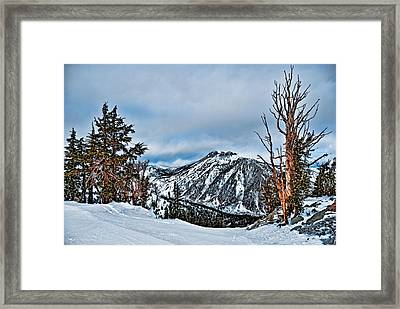 Mt. Rose Framed Print by Maria Coulson