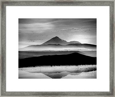 Framed Print featuring the photograph Mt. Shasta by Irina Hays