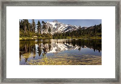 Mt Shuksan Reflection Framed Print