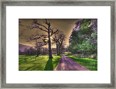 Muckross Park Kerry Ireland Framed Print by Jo Collins
