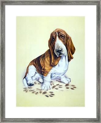 Mucky Pup Framed Print by Andrew Farley