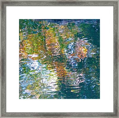 Mud Creek Reflection Framed Print