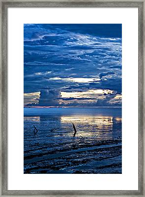 Mud Flats Framed Print by Sarita Rampersad