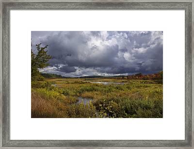 Mud Pond Clouds Framed Print