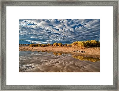 Mud Puddle Framed Print by Cat Connor