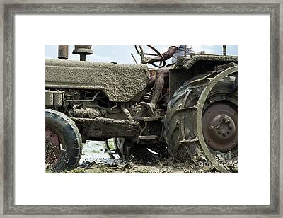 Mud Framed Print by Tim Gainey