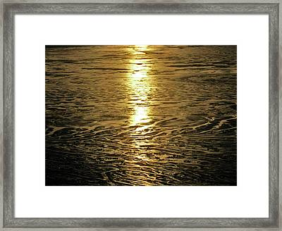 Framed Print featuring the photograph Muddy Reflection by Jeremy Rhoades