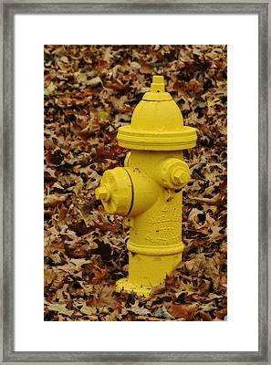 Mueller Fire Hydrant Framed Print