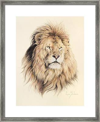 Mufasa Framed Print by Lucie Bilodeau