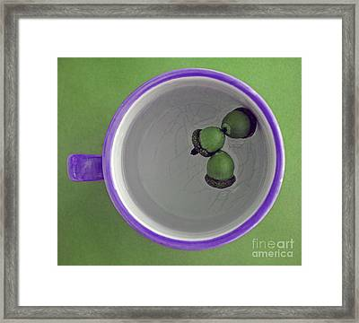 Mug And Finials 2 Framed Print