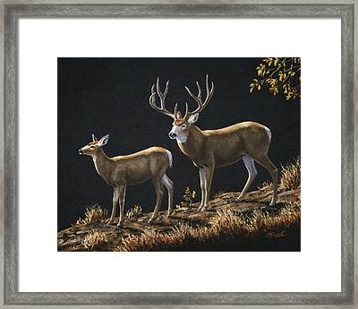 Mule Deer Ridge Framed Print by Crista Forest