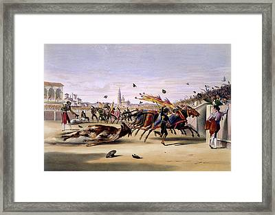 Mules Dragging Out The Bull Framed Print