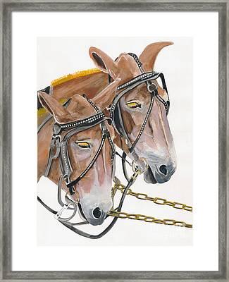 Mules - Two - Beast Of Burden Framed Print by Jan Dappen