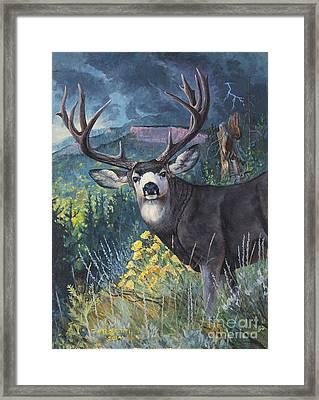 Mulie Storm Framed Print