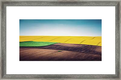 Multi Colored Panoramic Spring Field Framed Print by Borchee