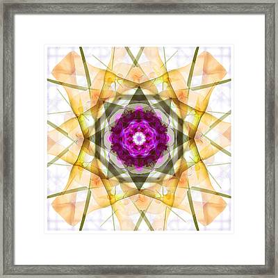 Multi Flower Abstract Framed Print by Mike McGlothlen