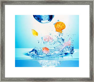 Multicolored Seashells And Water Framed Print by Panoramic Images