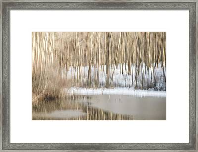 Multiple-exposure Of Trees In Winter Framed Print