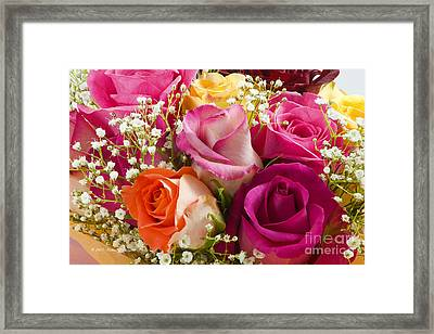 Multiple Roses Arrangement Framed Print