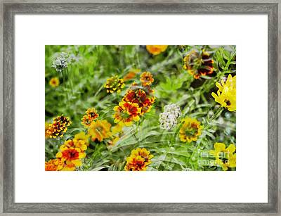 Framed Print featuring the photograph Multiplicity by Maria Janicki
