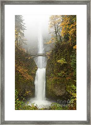 Multnomah Autumn Mist Framed Print