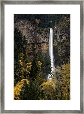 Multnomah Falls Framed Print by Brian Bonham