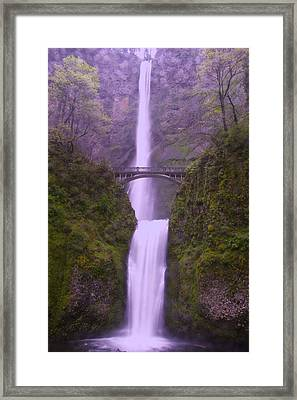 Multnomah In The Drizzling Rain Framed Print by Jeff Swan