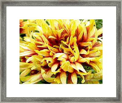 Framed Print featuring the photograph Mum 3 by Sally Simon