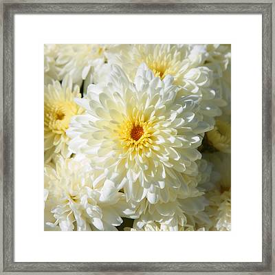 Framed Print featuring the photograph Mums The Word by Courtney Webster