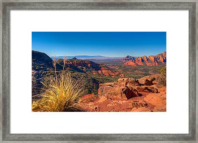Munds Wagon Trail Framed Print