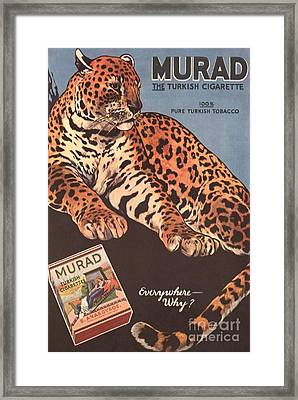 Murad 1910s Usa Cigarettes Smoking Framed Print by The Advertising Archives