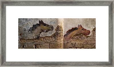 Mural Of Animal On Wall, Acre Akko Framed Print