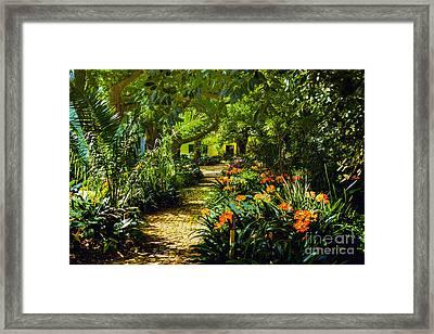 Muratie Gardens Framed Print by Rick Bragan