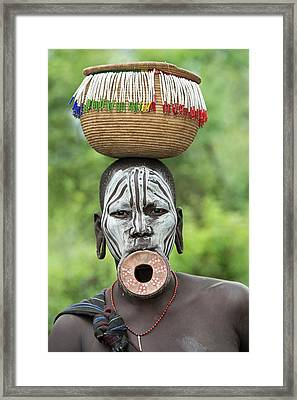 Mursi Woman With Lip Plate And Basket Framed Print by Tony Camacho