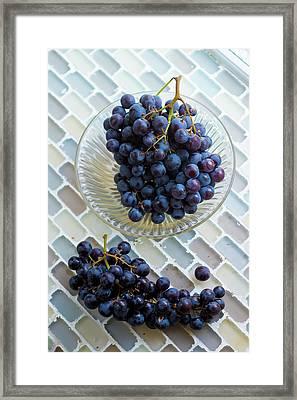 Muscat De Hambourg Grapes Framed Print by Aberration Films Ltd